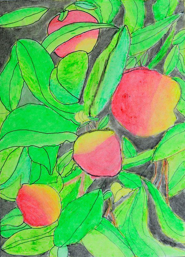 balochiistani apples are very sweet in taste