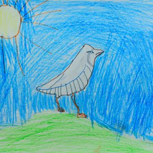 National Bird charkor