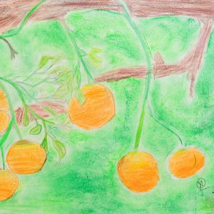 Energetic color and fruit